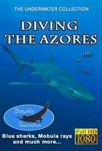 Azoren cover