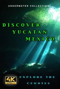 Underwater films Discover Yucatan Mexico 4K for sale
