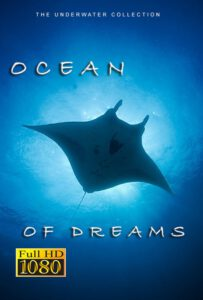 Bluewaterfascination underwater films Ocean of dreams for sale